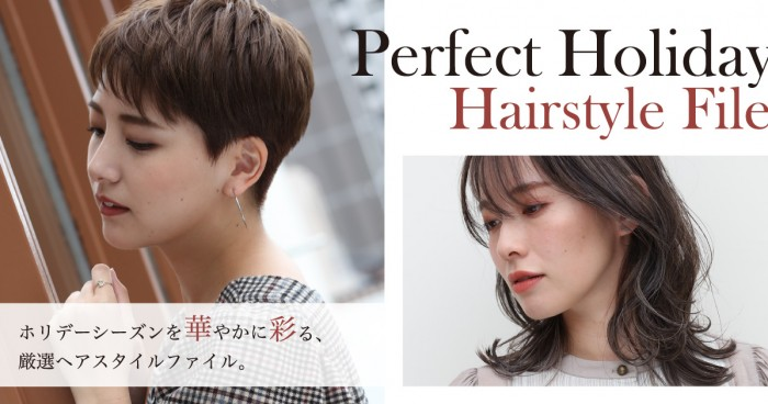 Perfect Holiday Hairstyle File