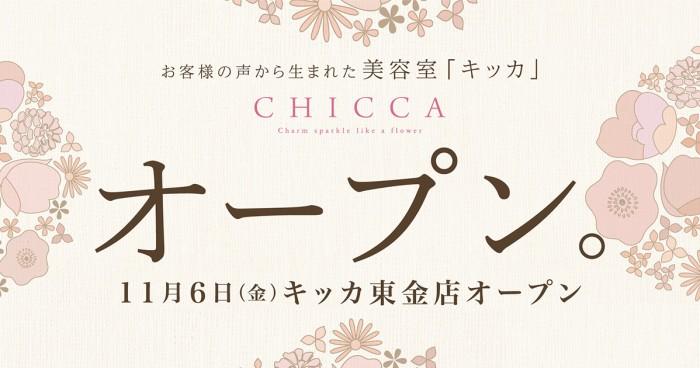 11/6(金) CHICCA東金店  GRAND OPEN